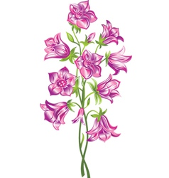 Bell flower vector image