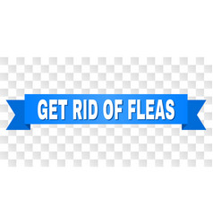 Blue stripe with get rid fleas caption vector