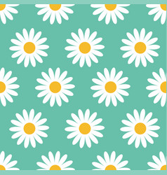 Cute camomile plant collection seamless pattern vector