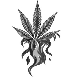 design leaf hemp from red flame vector image