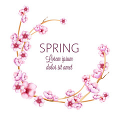 pink spring wreath with watercolor blossom flowers vector image