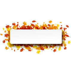 autumn banner with orange leaves vector image