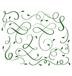 Green set of vintage flourish decorative art vector