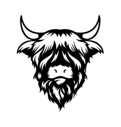 Highland cow head design on white background vector