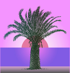 i silhouette palm tree on seashore in sunset vector image