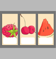 set of fruits banners vector image