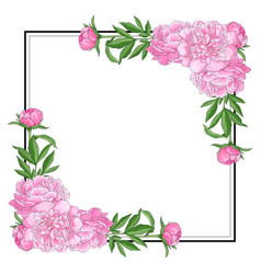 Tender pink peonies on corners of square shape vector