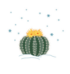 winter cactus with flowers and snowflakes sky new vector image