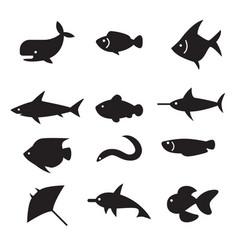 fish icon set vector image