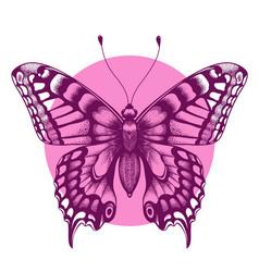 Beautiful butterfly t-shirt design beauty symbol vector