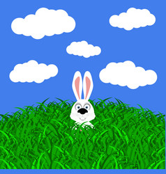Funny easter rabbit on white background vector