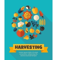 Harvest fruits and vegetable poster vector image