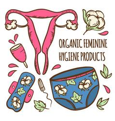menstruation set feminine hand drawn vector image