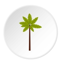 Palm woody plant icon flat style vector