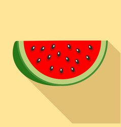 part of watermelon icon flat style vector image