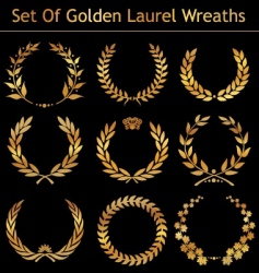 set golden laurel wreaths vector image