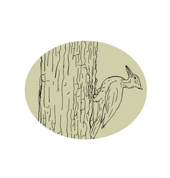 Woodpecker pecking tree drawing vector