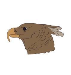 A portrait of an eagle color vector