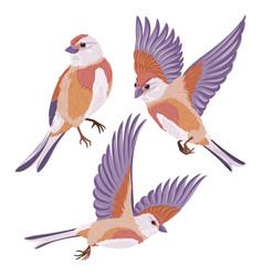 Cartoon birds collection vector