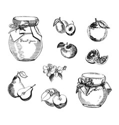 collection of jar of jam with plum apple jam vector image