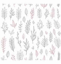 hand drawn vintage botanical pattern vector image