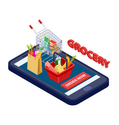 online grocery concept mobile app for vector image