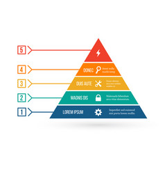 Pyramid infographic template with five elements vector