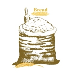 Sack with Whole Flour Hand Draw Sketch vector image