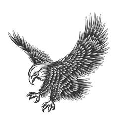 eagle engraving vector image vector image