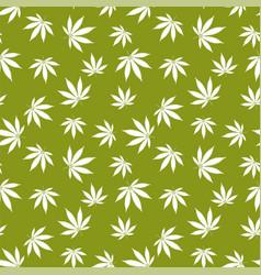 cannabis seamless pattern marijuana leaf white vector image