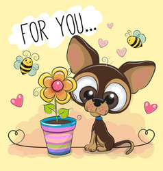 Cute cartoon puppy with flower on orange vector