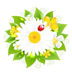 Flowers For Design vector image