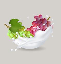 Juicy sweet grape in milk splash vector