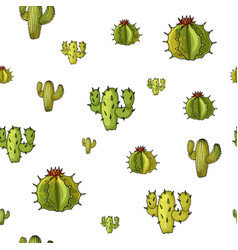 seamless pattern with cactuses trendy vector image