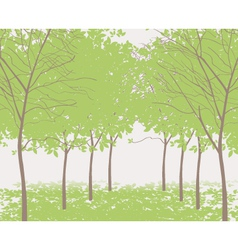 trees in the park vector image