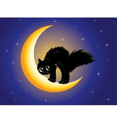 Black cat on moon vector image vector image