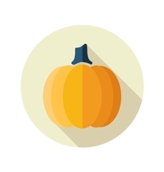 Pumpkin flat icon with long shadow vector image vector image