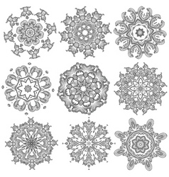 black embroidery vector image vector image