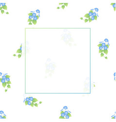 blue morning glory banner on white background vector image