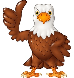 Cartoon funny eagle giving thumb up isolated vector