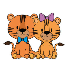Cute and adorable couple tigers characters vector