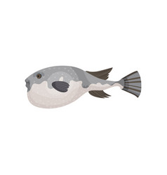 Detailed flat icon of swimming fugu side vector