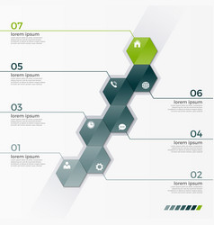 infographic template with 7 hexagons vector image