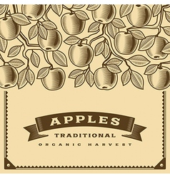 Retro apple harvest card brown vector image vector image