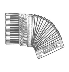accordion in hand-drawn style vector image