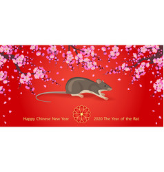 Chinese new year rat 2020 greeting card vector