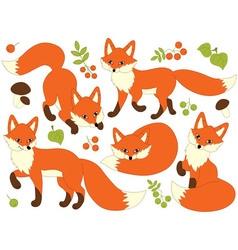 Foxes Set vector