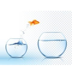 Goldish Jumps Out Water Bowl PIcture vector