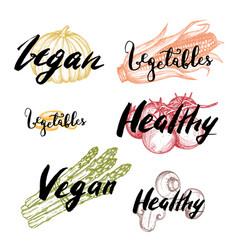 healthy vegan food hand drawn labels set vector image