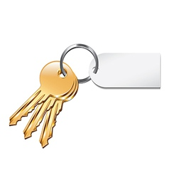 Keys with tag isolated vector